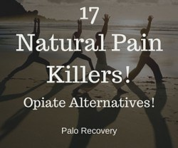 17 Natural Pain Killers